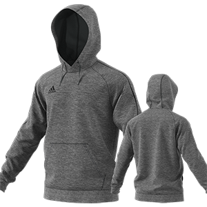SWEAT CAPUCHE CORE 18 GRIS I MFTE01484-D
